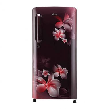 LG-190-L-5-Star-2019-Inverter-Direct-Cool-Single-Door-Refrigerator-GL-B201ASPY-Scarlet-Plumeria